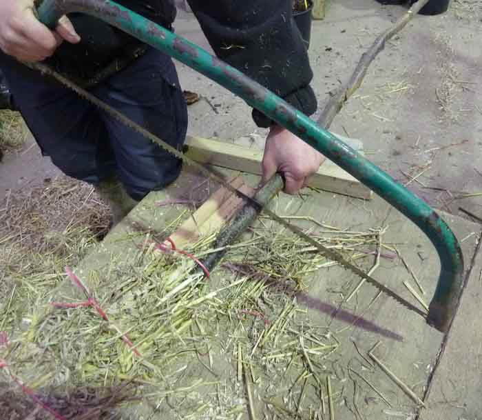 cutting a stick